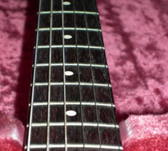 Brandon N Schory: Music: Ampeg by Burns of Londong Wild Dog Guitar